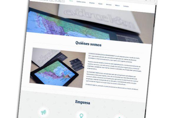 Diseño Web Evidence K&M Portada