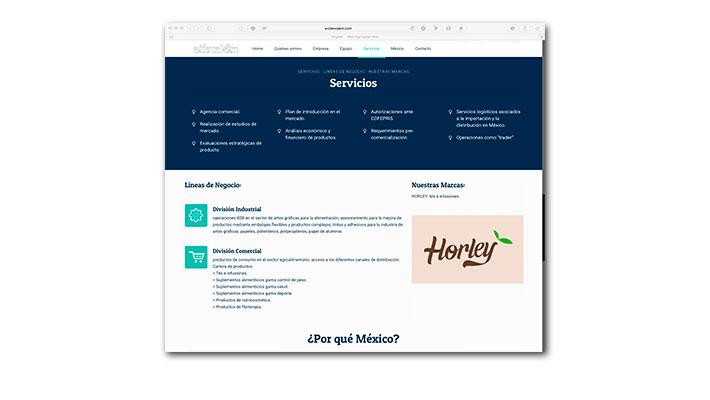 Diseño Web Evidence K&M - Servicios